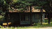 Small houses for 2, 3, 4 peoples are located in a wood among the Crimean pin